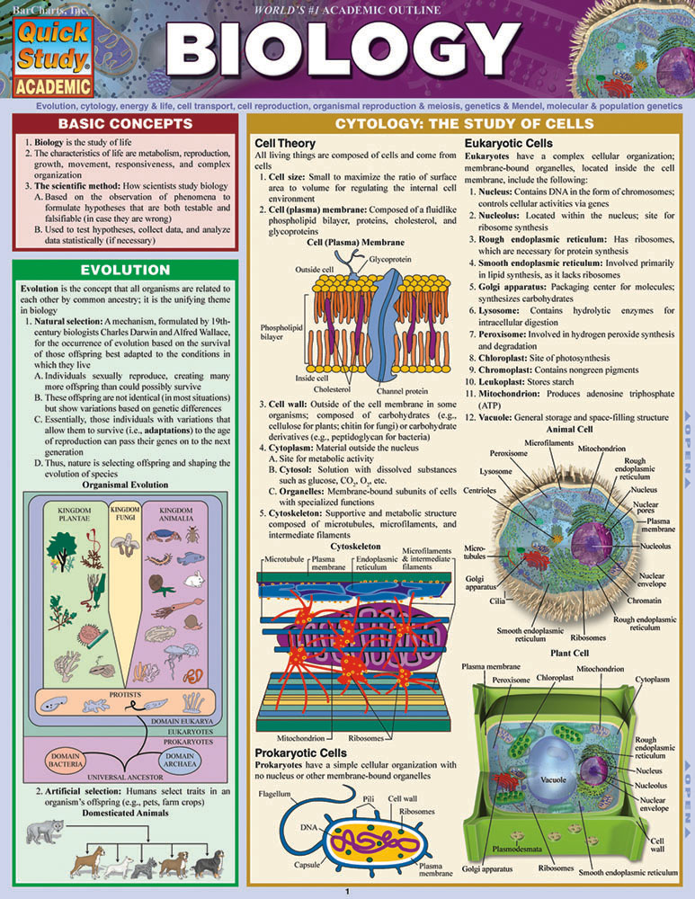 Image For Biology Study Guide
